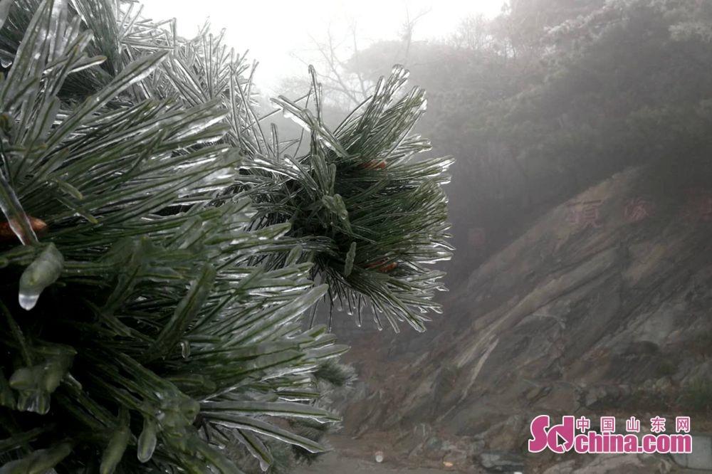<br/>  9日,临沂市气象台继续发布大风蓝色预警信号,蒙山气温降至4~8℃。<br/>