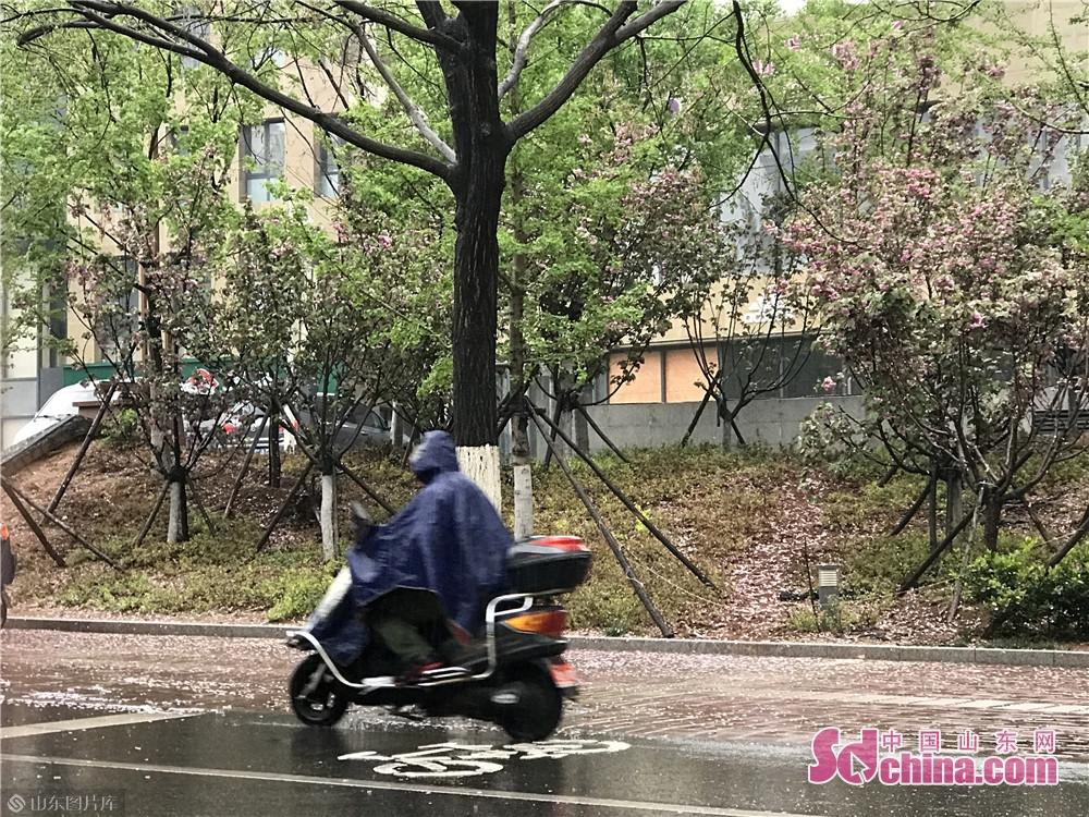 降雨缓解了近日由于气温高、降水少、大风天气带来的森林火险的风险。