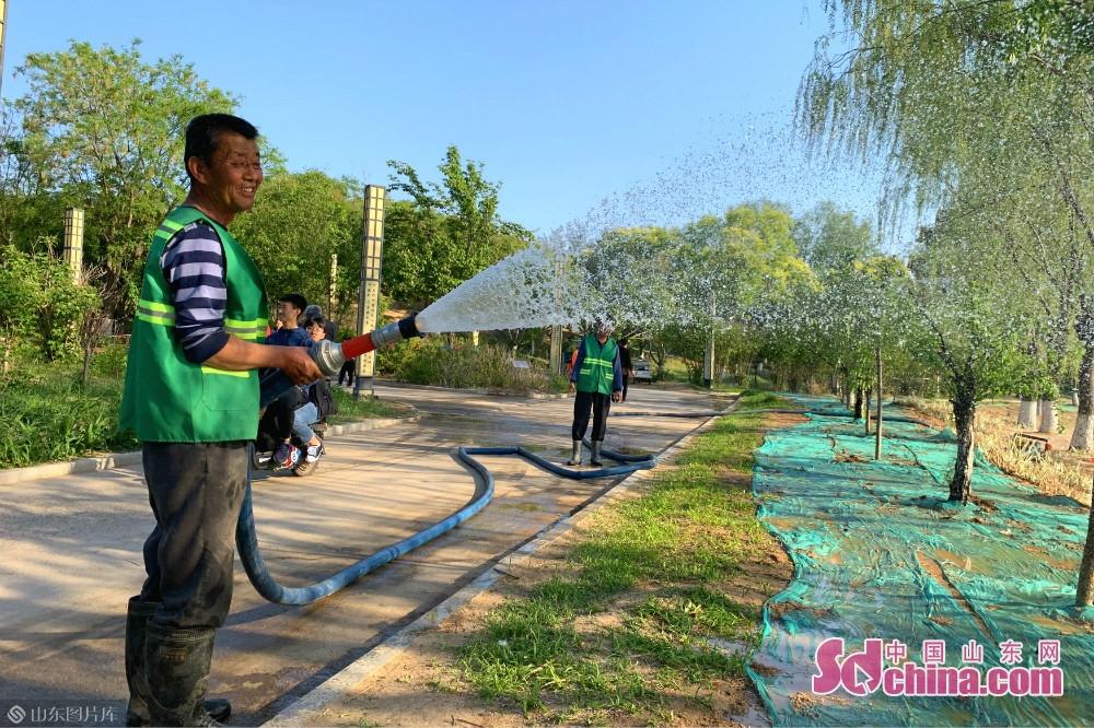 <br/>  5月1日,德州市宁津县康宁湖公园,园林维护员为公园内的树木浇水。<br/>