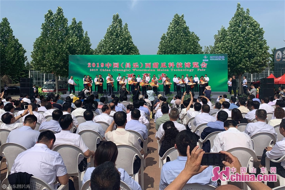 <br/>  16日,2019中国(昌乐)西甜瓜科技博览会在潍坊昌乐西瓜科技示范园开幕。<br/>