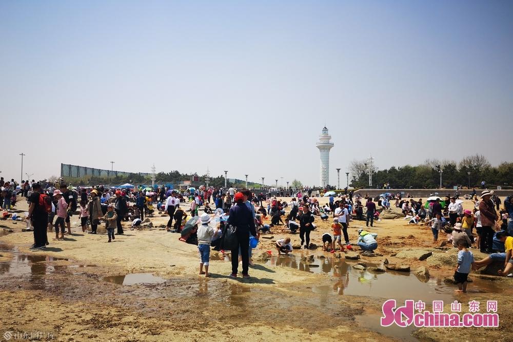 日照灯塔景区由于风景优美,吸引了大量游客。<br/>