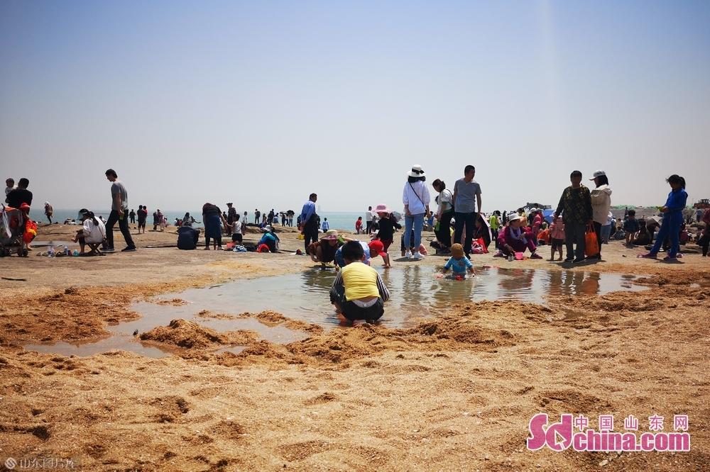 很多游客在沙滩享受亲子互动的乐趣。<br/>