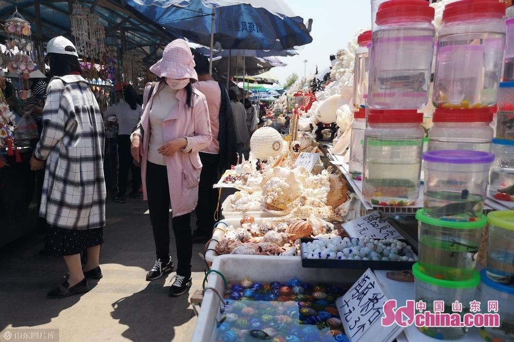 景区内有很多销售海洋产品的摊位供游客挑选。<br/>