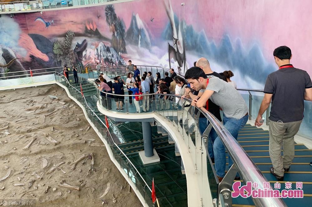 <br/>  7月4日,欧亚国家新闻官员与记者山东行采访团来到诸城市探寻恐龙,带着远古气息的恐龙文化给采访团留下了深刻印象。<br/>