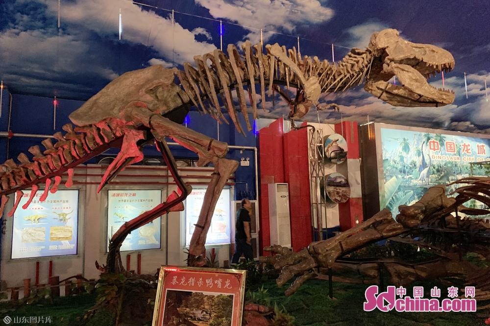 <br/>  场馆运用声、光、电、影视成像等高新技术,充分展示&ldquo;两大奇观、三大龙王&rdquo;,还原再现白垩纪晚期群龙争霸的恢弘场景。<br/>