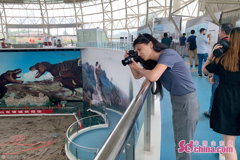 <br/>  外媒一行首先参观了巨型诸城暴龙馆,馆中出土了亚洲最大、中国唯一的暴龙&mdash;&mdash;&ldquo;巨型诸城暴龙&rdquo;,是目前国内最大的暴龙遗迹遗址主题馆,被恐龙专家誉为&ldquo;恐龙格斗世界&rdquo;。<br/>