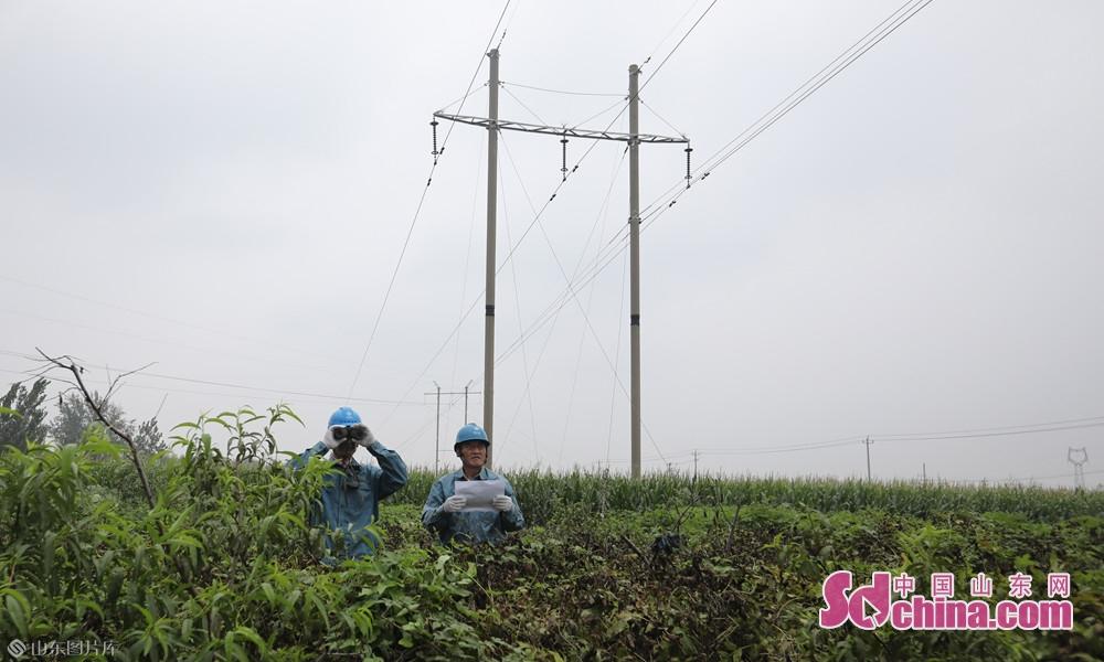 2019年8月10日,山东菏泽,国网菏泽供电公司及各县区公司积极应对&ldquo;利奇马&rdquo;,保市民安心用电。<br/>
