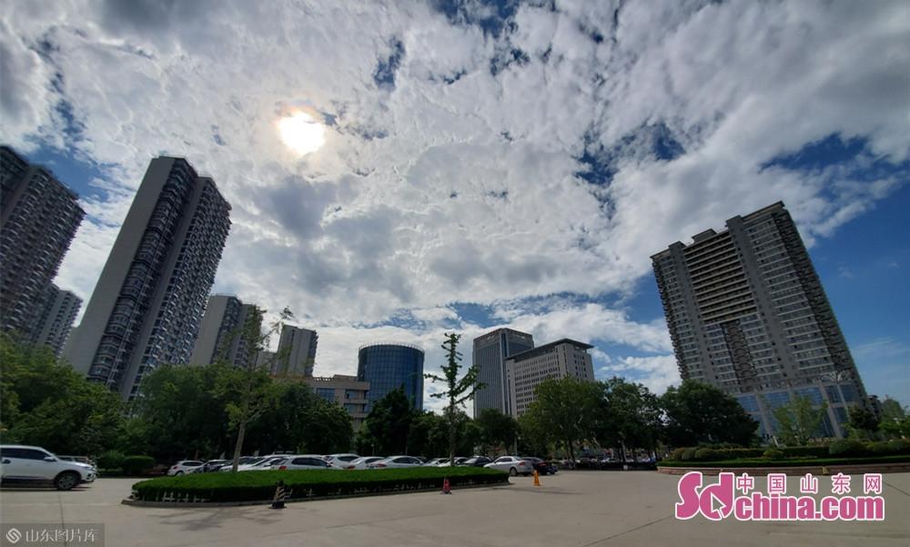 8月13日9点20分, 山东菏泽 雨后的阳光格外明媚。<br/>