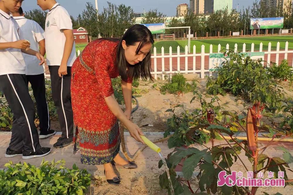 <br/>  15:40下午,趁着大课间的时间,邢老师来到稼穑园为学生们种植的作物浇水。据邢老师介绍,这个园子是学生们的劳动实践基地,院子里的作物都是学生们亲手种植的,老师定期过来检查清理。<br/>