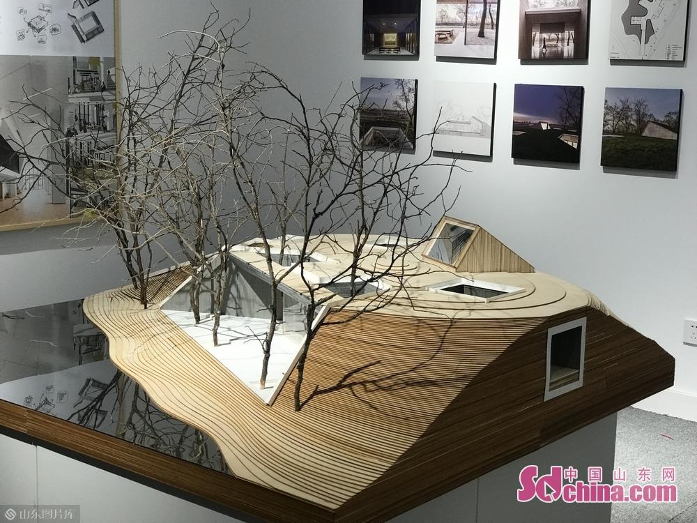 建築芸術は初めて出展される。