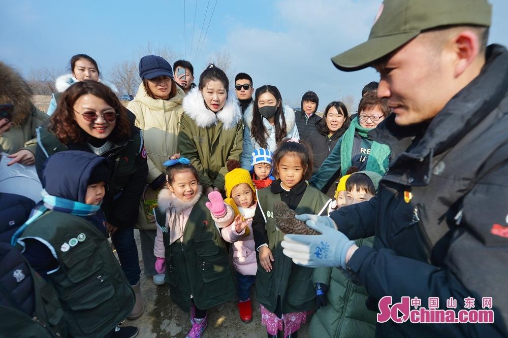 <br/>  1月12日,小志愿者在青岛市城阳区白沙河入海口湿地参与放飞救助的红隼。<br/>