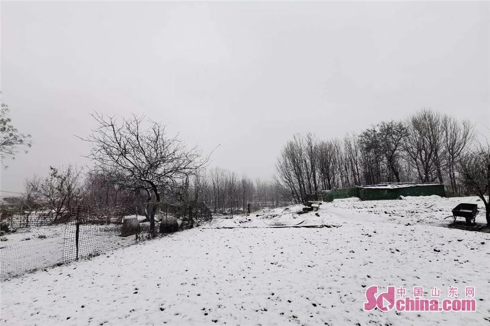 <br/>红石崖雪景