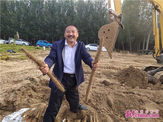 聊城高唐有一位身残志坚的村支书,靠种山药带乡亲走上致富路