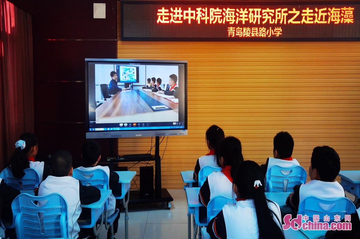<br/>  青岛陵县路小学的学生通过现场直播方式学习海洋藻类知识。<br/>