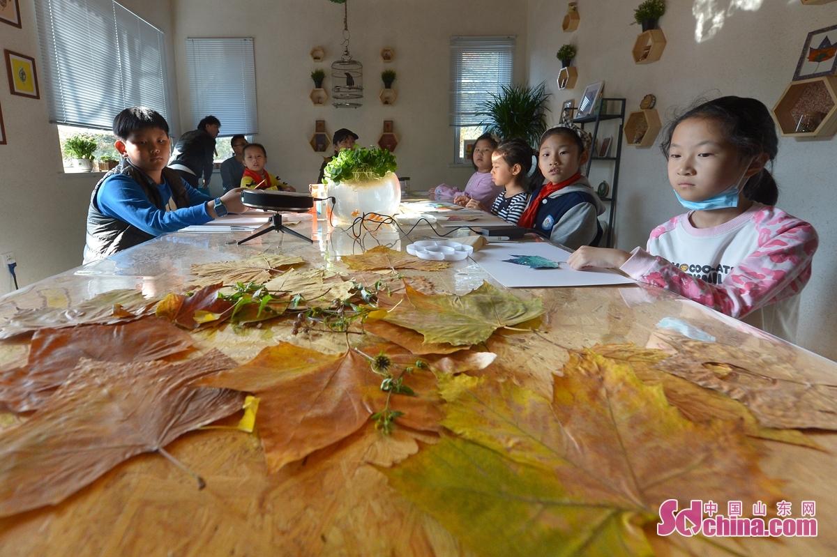 <br/>  11月15日,在青岛市&ldquo;公益科普驿站&rdquo;首场活动上摆放的搜集来的秋叶。<br/>