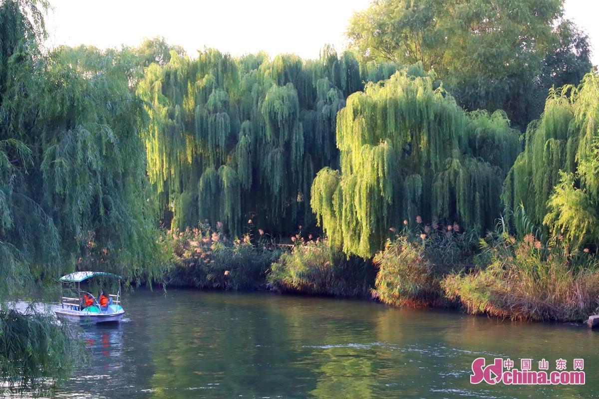 시원한 날에 관광객들이 배를 타고 아름다운 가을을 구경한다.<br/>