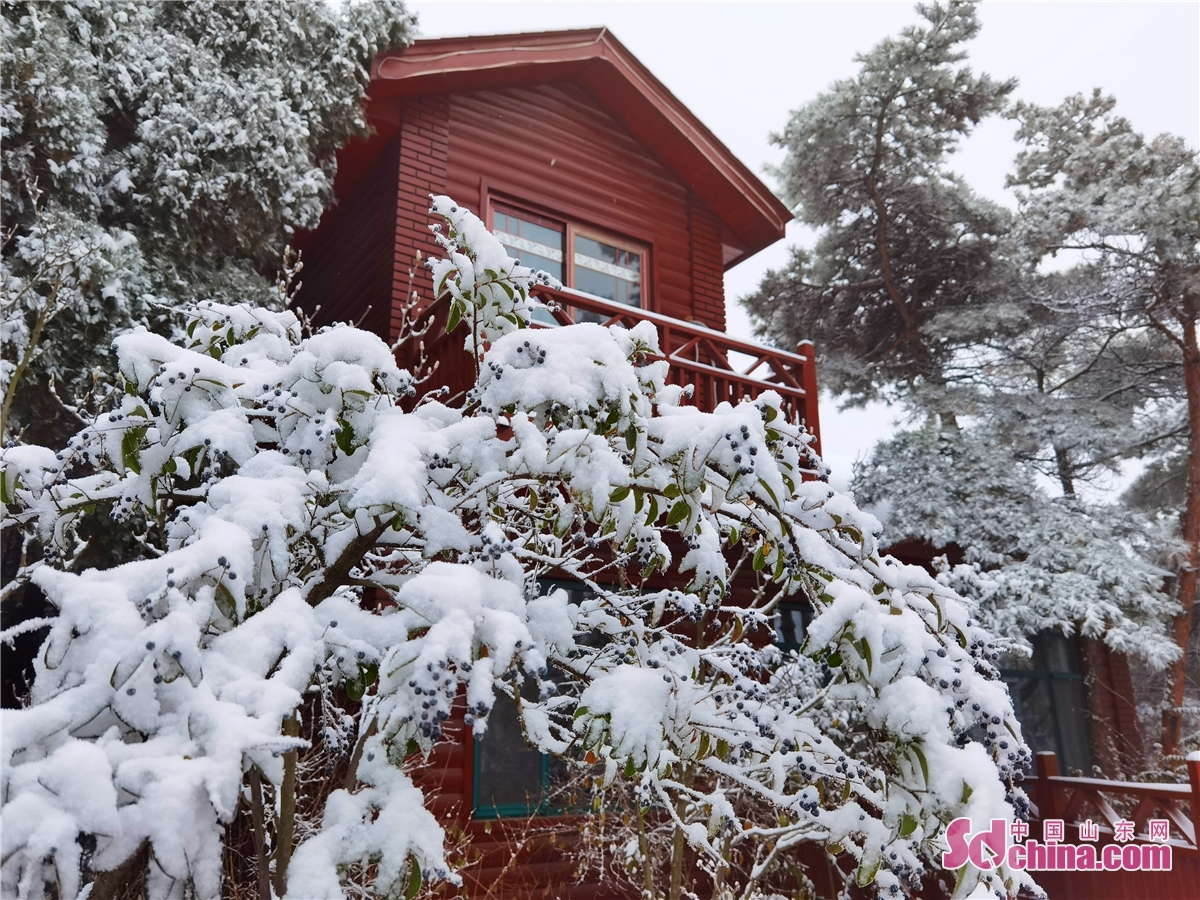 "On the afternoon of December 1, Paomaling Scenic Area in Jinan of China&rsquo;s Shandong province welcomed another snowfall this winter after the first snow several days ago. The houses and plants in the scenic area are covered with snow, making everything look like being covered with a white ""coat&rdquo;, and the beauty of the snow-covered landscape is like a scroll painting.<br/>"