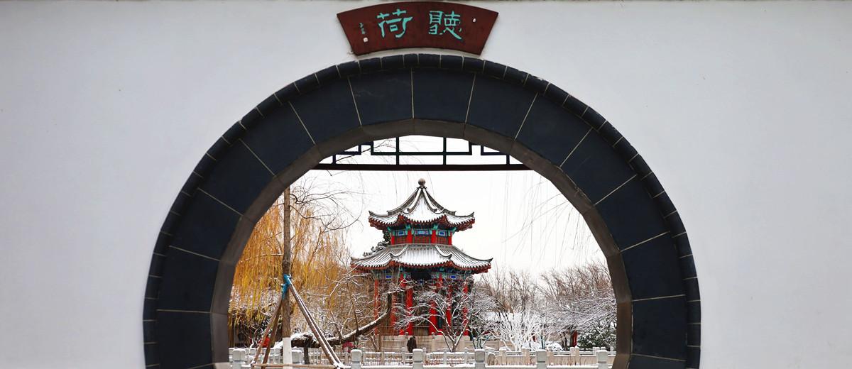 蜡梅吐蕊,玉兰含苞:济南初雪后,大明湖静美如诗