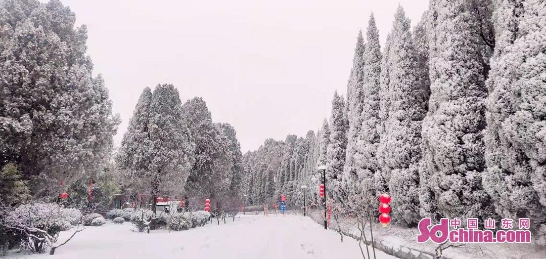 <br/>  道で雪で覆われていた。<br/>