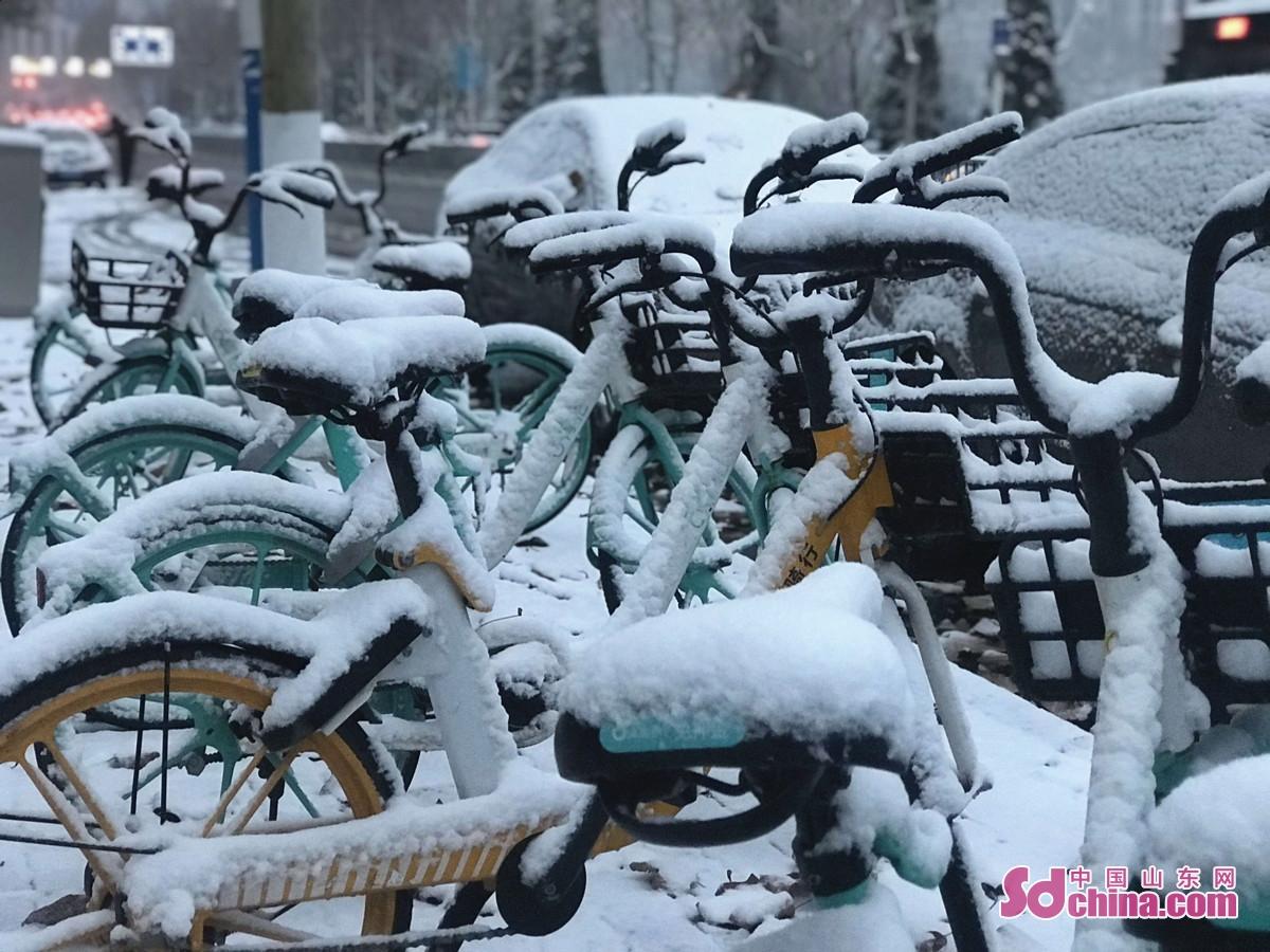 <br/>  12月28日晚,济南主城区如约迎来首场大雪,放眼望去,大地、树木、屋顶都披上了银装。图为停在路边的共享单车落满积雪。<br/>