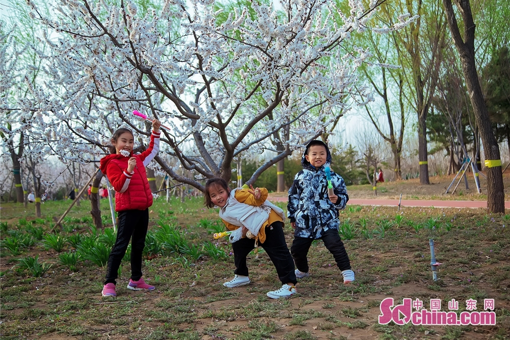 Kids pose for a photo in a park in Dongying, East China's Shandong Province on March 25, 2020. (Photo by Ma Renliang/Sdchina.com)<br/>