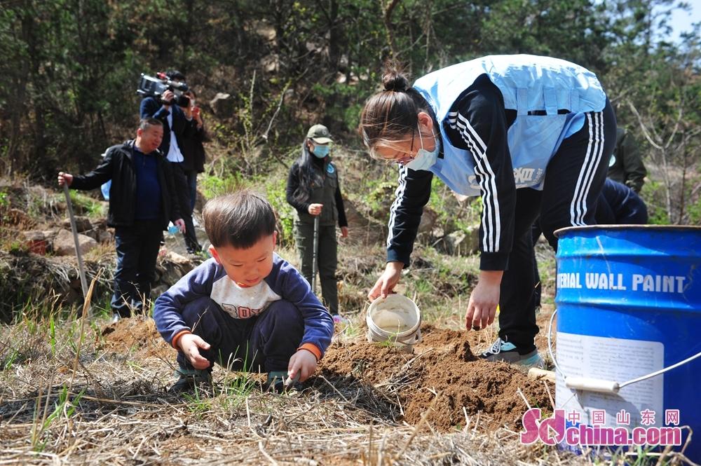 <br/>  4月17日,在山东省青岛市城阳区野生动植物保护协会科普基地,志愿者种植国家级稀有濒危植物崂山百合。<br/>
