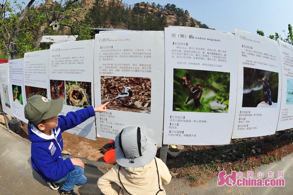 <br/>  4月17日,在山东省青岛市城阳区野生动植物保护协会科普基地,两名小朋友观看鸟类科普展。<br/>