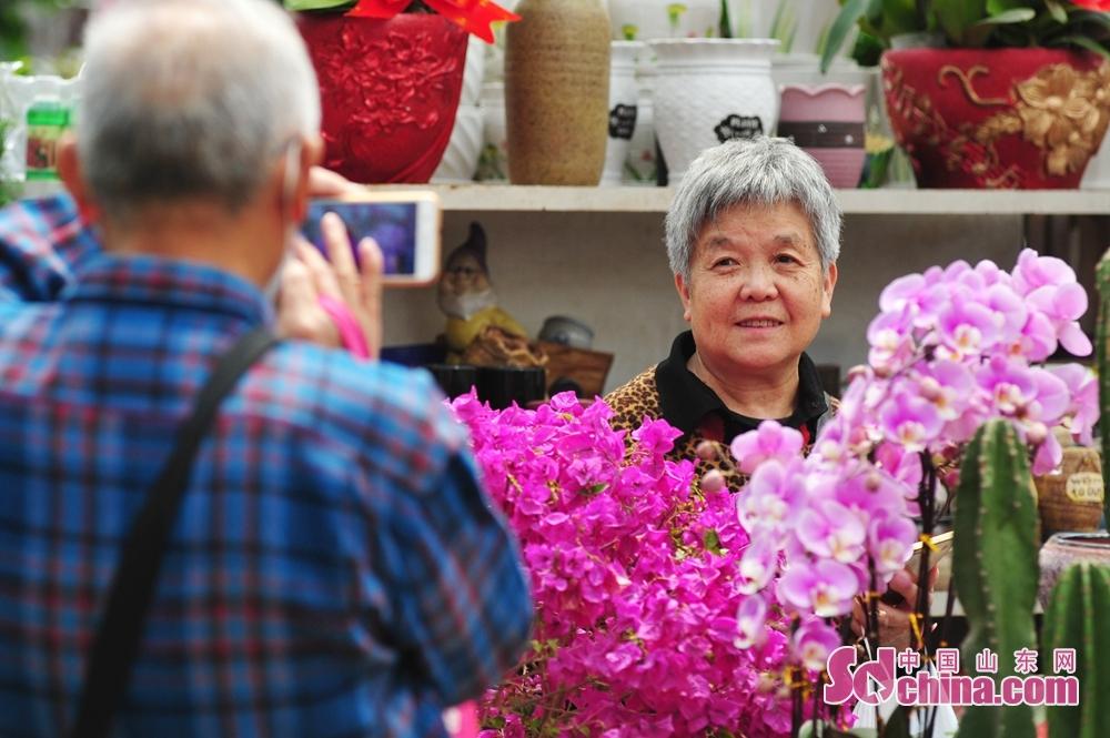 山東省青島市崂山区における枯桃花卉取引センターで、2人の老人が花見をして写真を撮る。