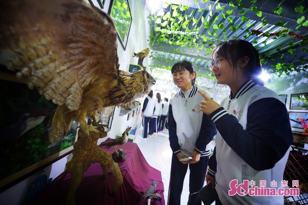 学生たちは「国際生物多様性の日」を迎え、動物標本を見物して鳥の保護意識を向上させた。<br/>