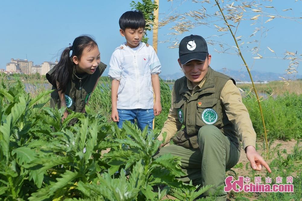 野生動植物保護ボランティアが小学生に植物と生態環境の保護について説明している。