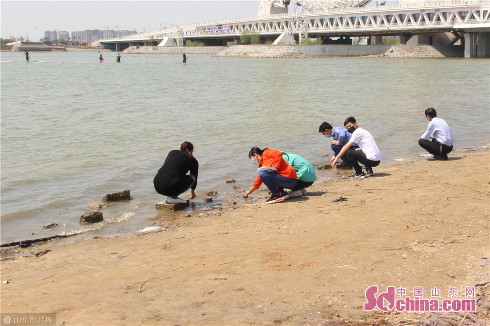 <br/> &ldquo;五一&rdquo;小长假来临,近几年,潍坊滨海成为潍坊及周边地区亲海戏水首选之地。<br/>