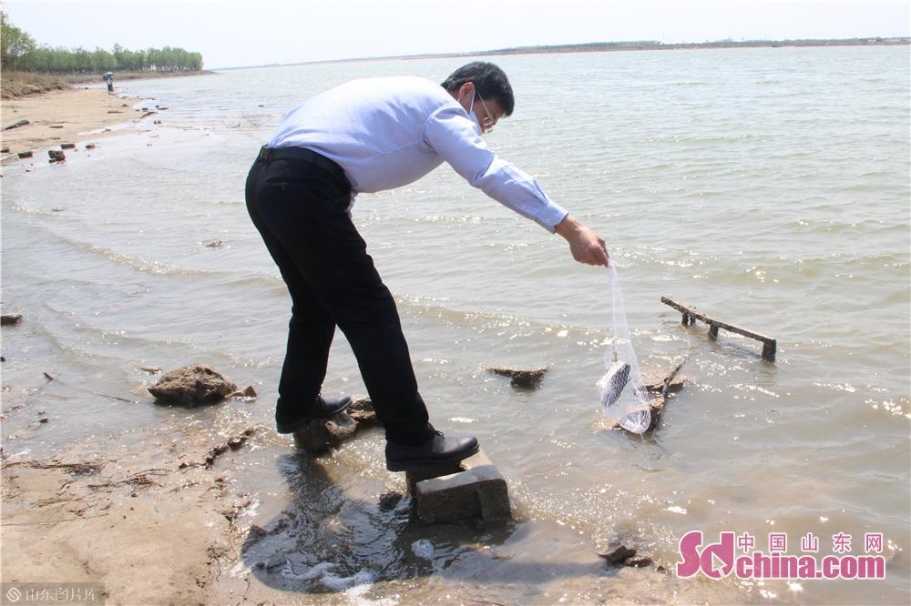 <br/>  经过环保和治理,现在河里的鱼和虾都能直接抓上来吃。<br/>