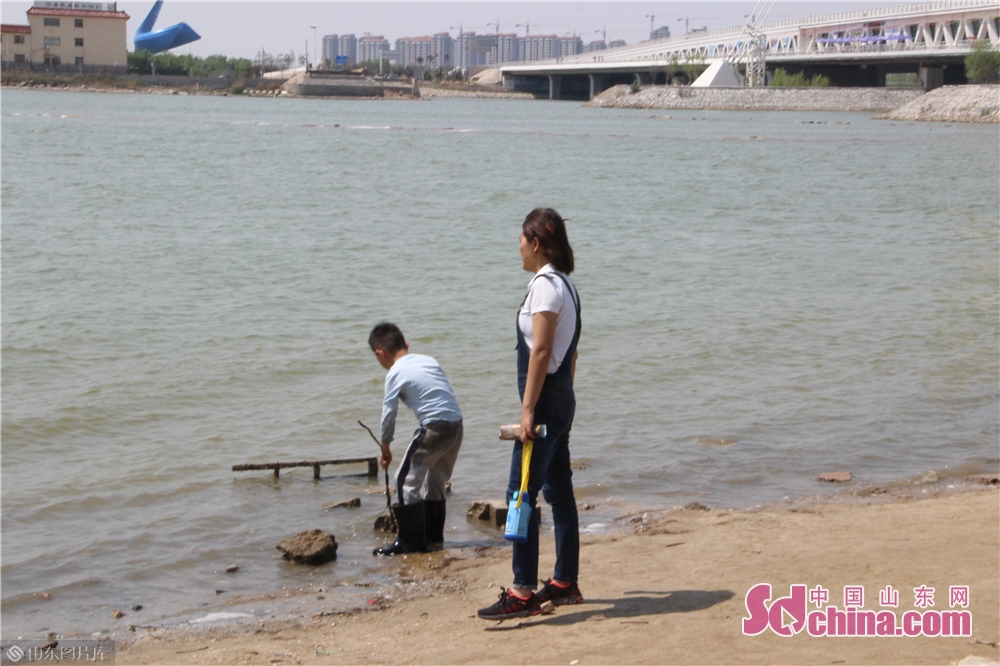 <br/>  市民纷纷选择自驾、组团去潍坊滨海白浪河景区,赏渤海之美。<br/>