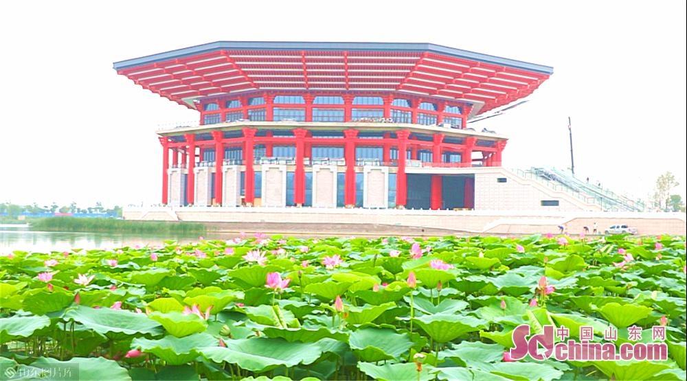 郓城博物馆位于郓城南部新城核心区和两轴交汇处,荷花与红色博物馆相互交映,已成为展望城市未来蓝图的重要窗口。