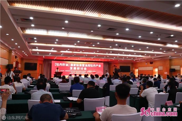 《牡丹籽油》国家标准暨油用牡丹产业发展研讨会召开