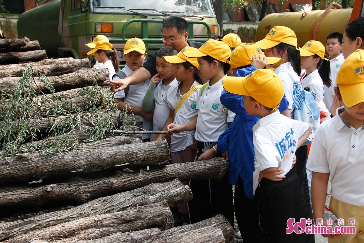 <br/>  近2个小时的实践活动,让中小学生近距离感知林场植被保持水土、净化大气、促进生态平衡的重要作用。