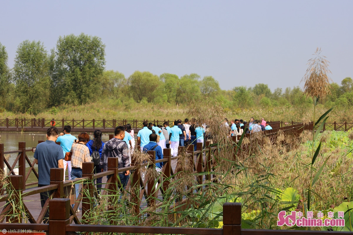 <br/>On Sept. 27, the &ldquo;Touching Jinan&rdquo; International Friends&rsquo; Healthy Walking was held in Jixi Wetland. 34 international friends from 12 countries, including Germany, France and South Korea, took part in the walking together with Chinese representatives from relevant departments and bodies, deepening friendship through the joy of exercise, and exploring the ecological beauty of Jinan.<br/>