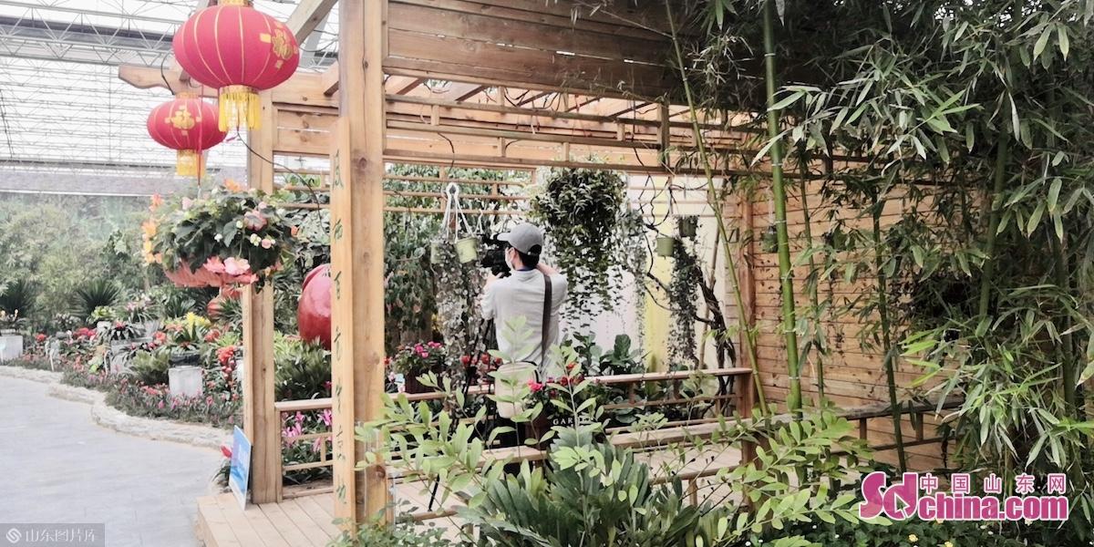 <br/><br/>  同时,推出花卉景观3D、VR展示,运用VR全景拍摄设备捕捉花博会景观超清晰、多角度画面,让游客足不出户就尽享花都花事。