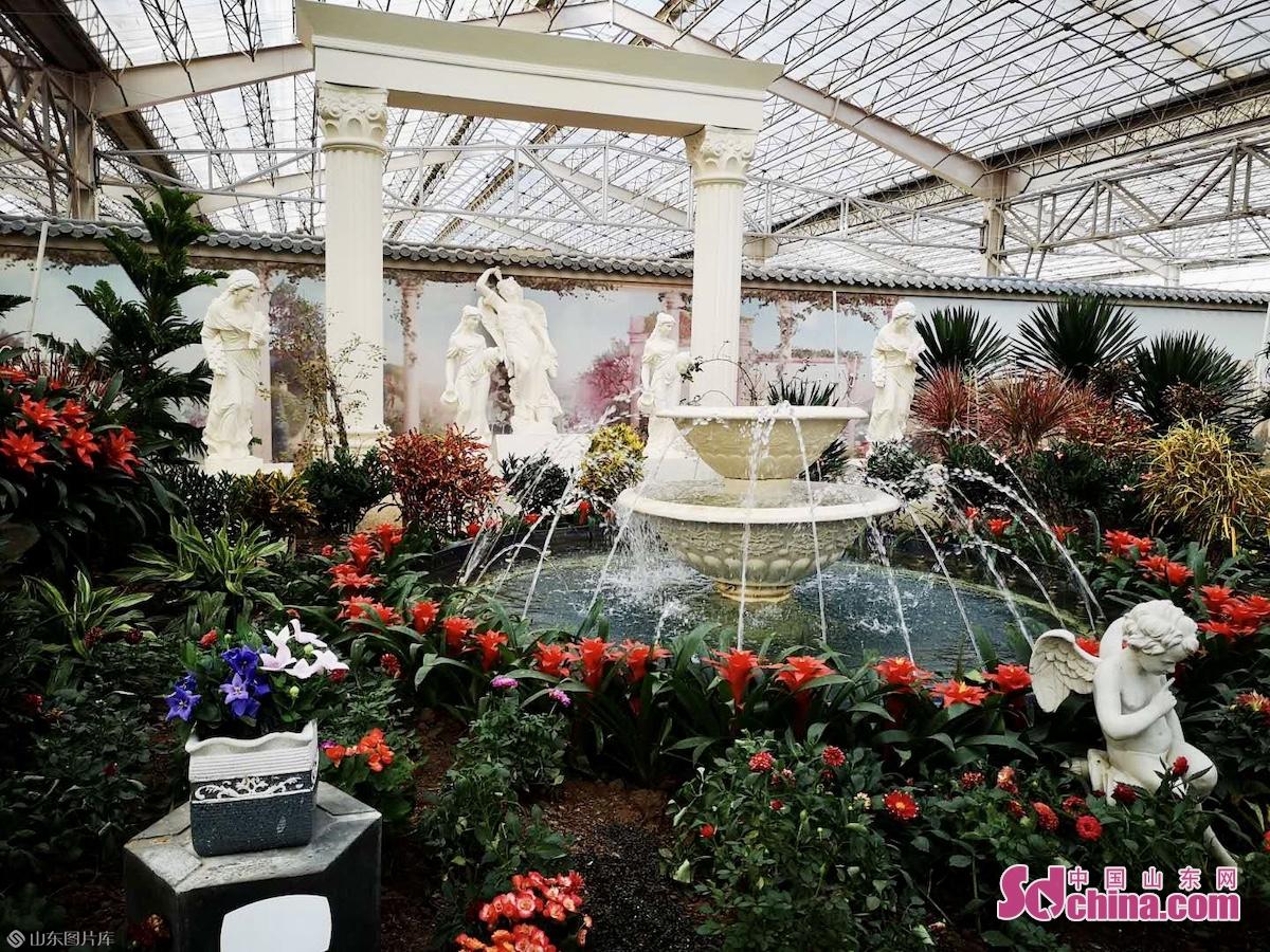 <br/><br/>  本届花博会还设有青州古城、弥河湿地公园和青州(国际)花卉创业园三个分展区,在会期补充时令花卉、营造节庆氛围,并纳入花博会旅游线路。<br/>