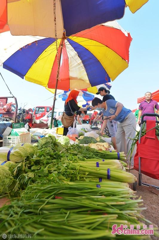 <br/>  2020年9月5日,在青岛市城阳区上马街道乡村大集上,市民前来选购新鲜蔬菜。 (王海滨 摄)<br/>
