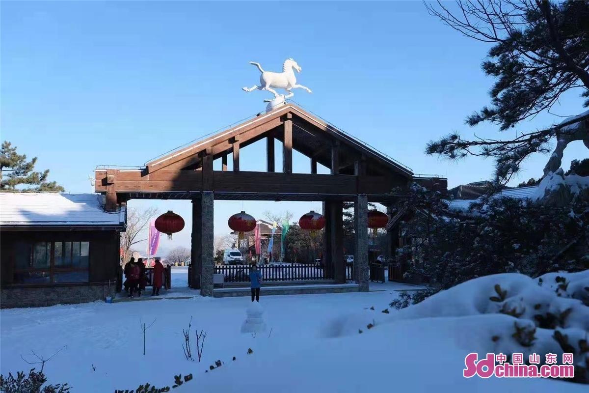 <br/>  2021年1月1日,刚下过雪的跑马岭景区银装素裹。<br/>  2021年元旦当天,跑马岭&middot;齐鲁雪乡正式开业,跑马岭首届齐鲁雪乡文化节也正式启动。跑马岭&middot;齐鲁雪乡是山东首家雪乡主题度假区,其游乐区分为七大主题:雾凇大道、冰雪童话主题乐园、雪地越野、精灵与神兽、梅花鹿和TA的朋友们、雪狼战场、雪豹观景区。跑马岭&middot;齐鲁雪乡项目是省内首创,与其他冰雪项目差异化明显,独具特色,能够勾起人们对儿时冬天的回忆。<br/>