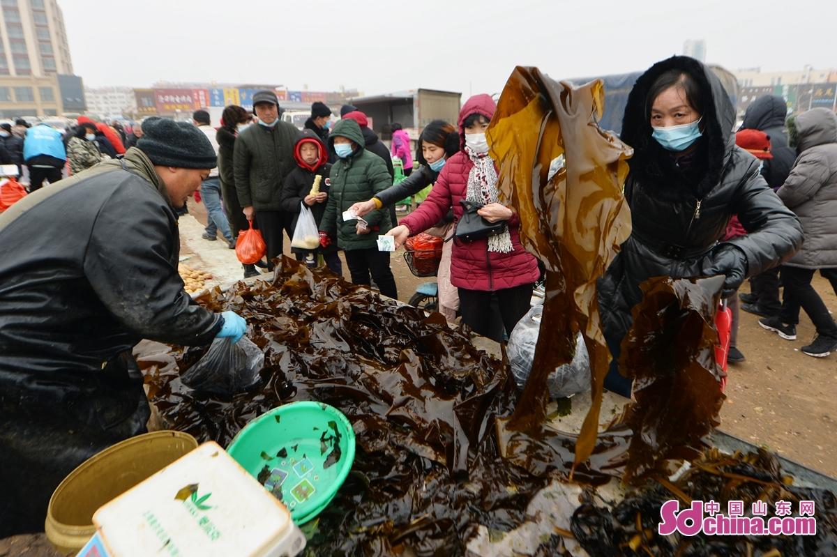 <br/>  人们在年货大集选购新鲜海带。<br/>