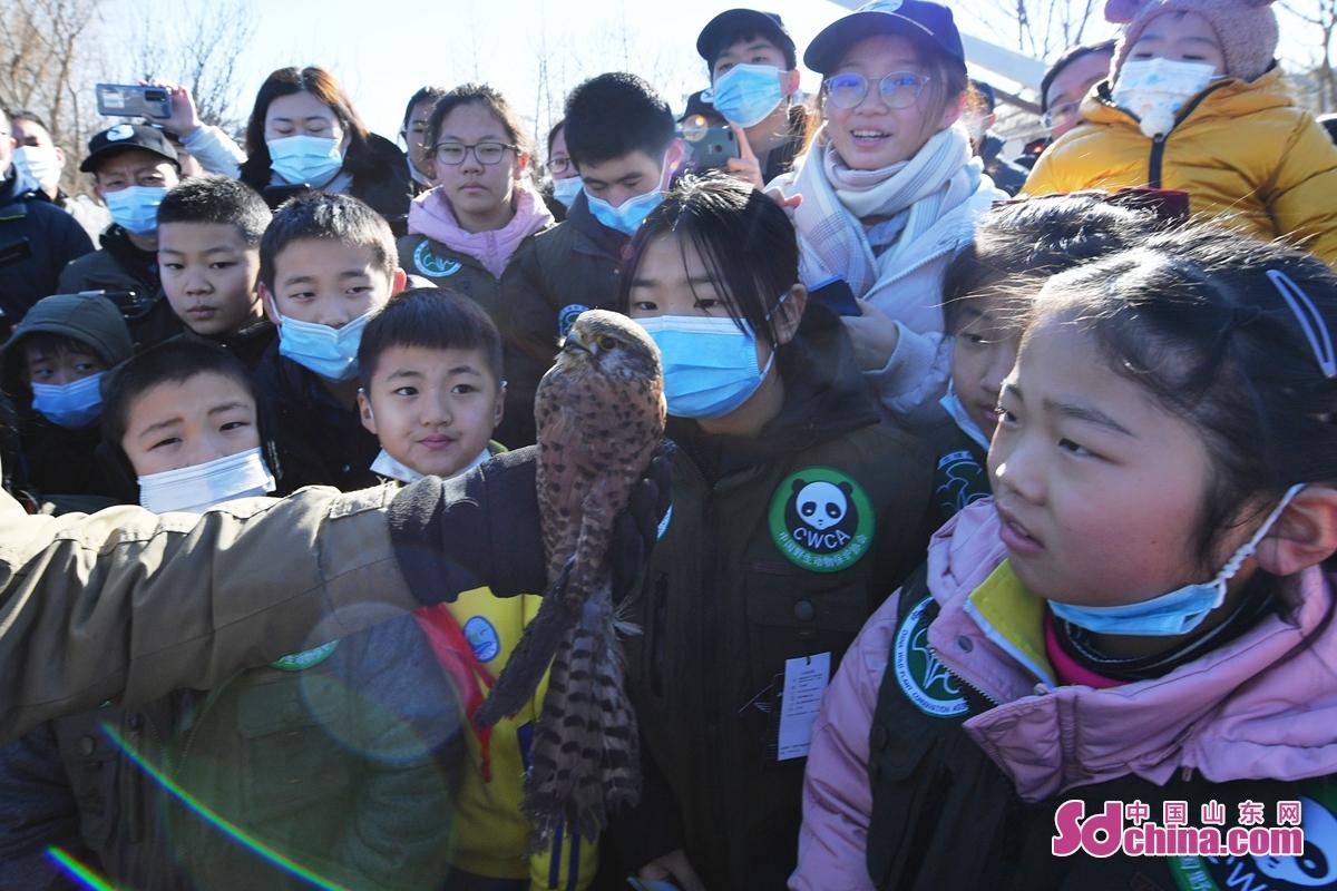<br/>  山东省青岛市百余名野生动植物保护志愿者在放归现场听取鸟类保护知识。<br/>