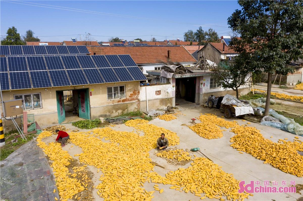 <br/>  2021年10月11日,山东青岛西海岸新区宝山镇雷家庄村的乡亲唐金政,正在通过光伏电站的电表箱,查看自家房顶安装的光伏电板的发电情况。<br/>