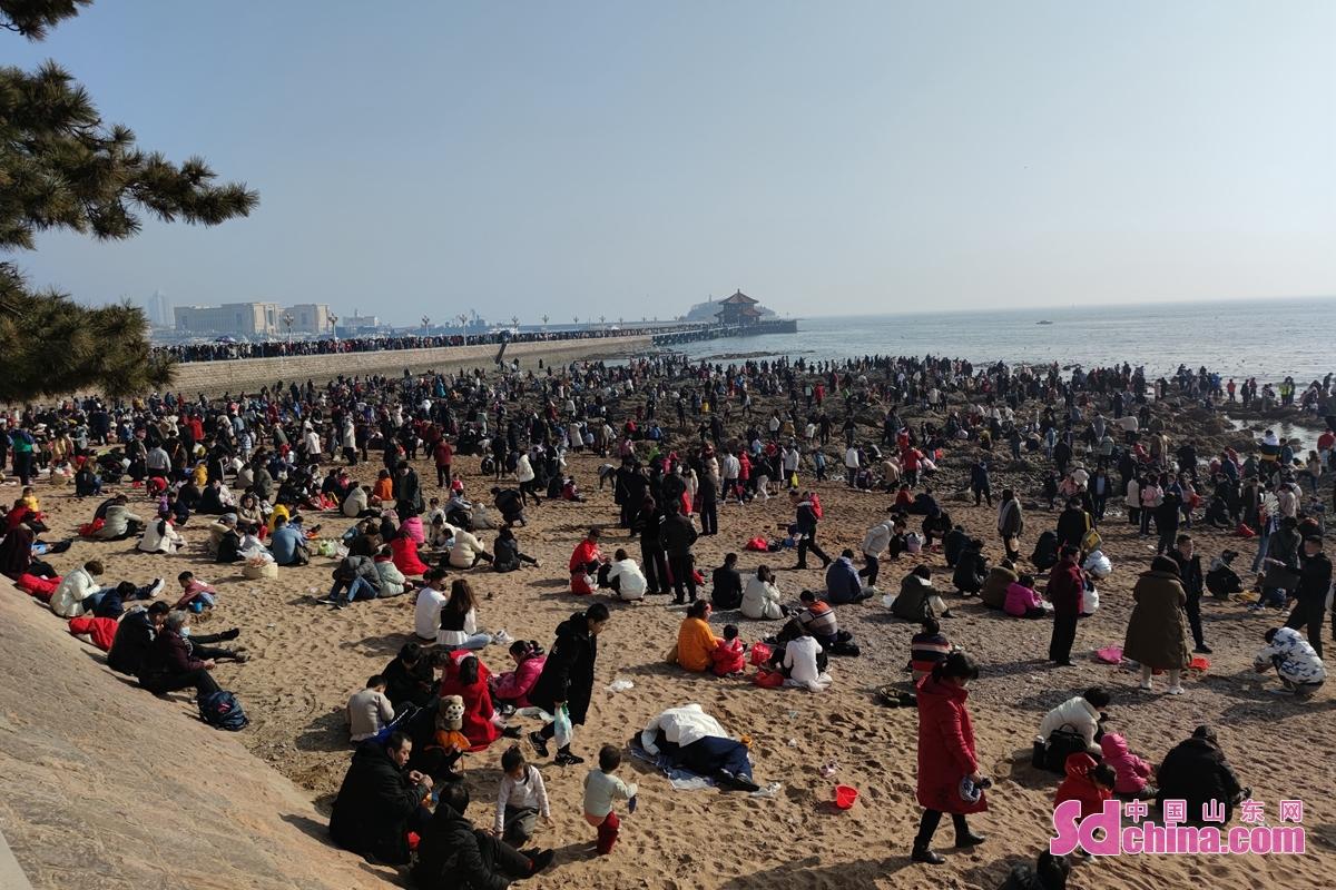 <br/>  旧暦の元日、天気が良く、青島桟橋観光地は人気が爆発的だった。<br/>