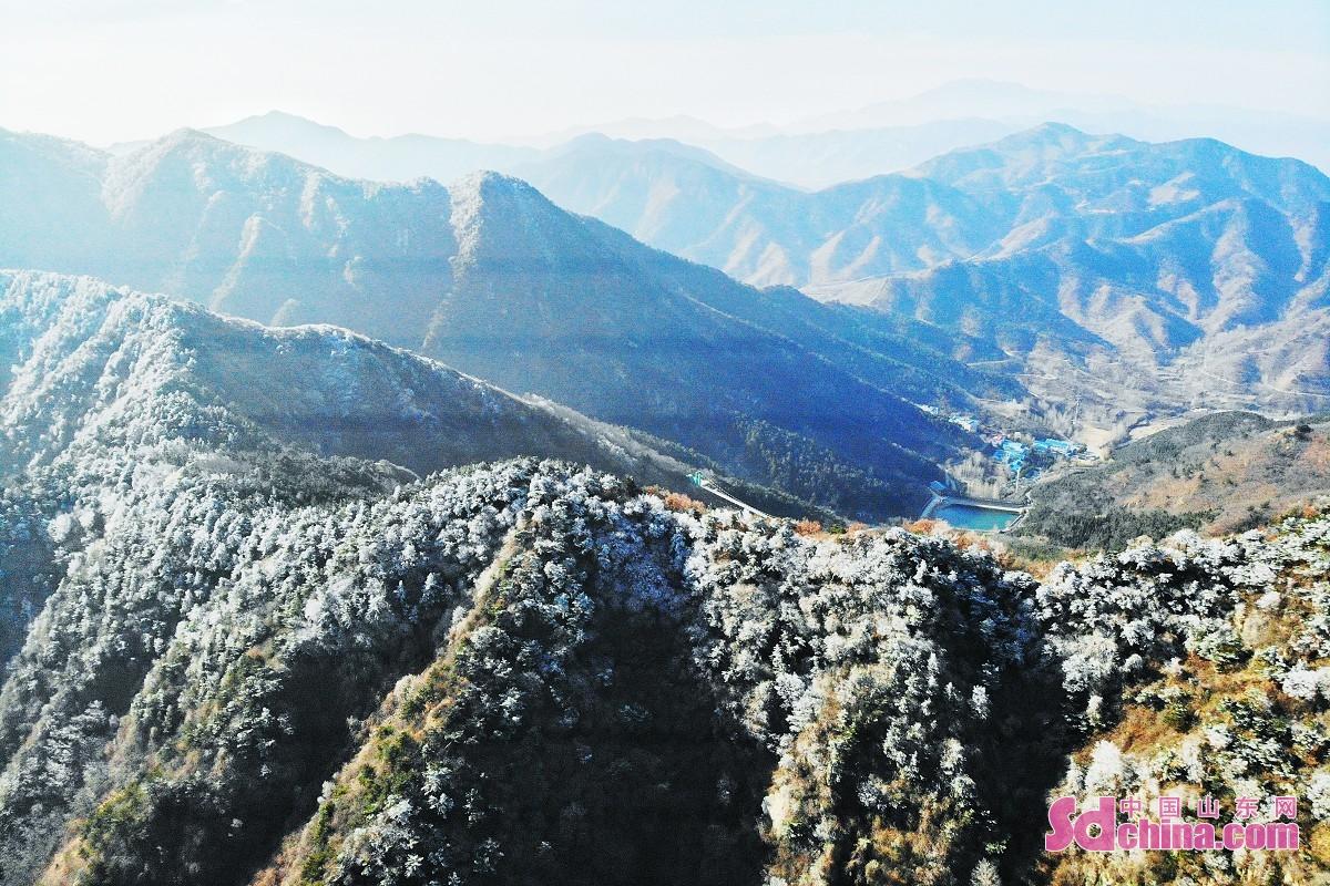 <br/>  2月15日清晨跑马岭惊现雾凇奇观,十分惊艳,媲美童话世界。雾凇俗称冰花、树挂,是低温时空气中水汽直接凝华,或过冷雾滴直接冻结在物体上的乳白色冰晶沉积物,也是非常难得的自然奇观。据跑马岭&middot;齐鲁雪乡景区相关负责人介绍,跑马岭也是济南为数不多的能够自然形成雾凇的景区。<br/>