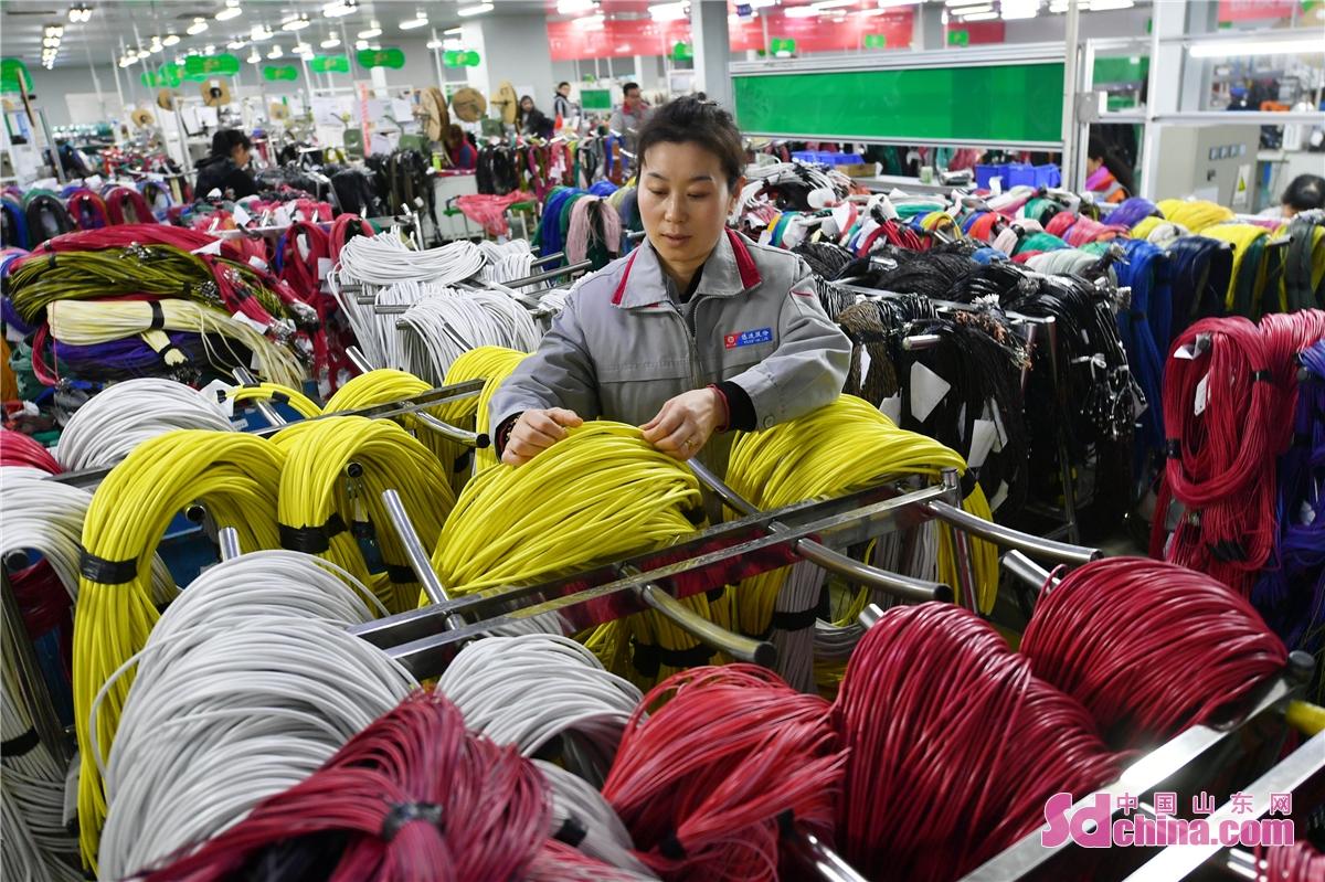 <br/>  2021年2月22日,位于青岛市城阳区惜福镇街道的悠进电装生产车间内,工人正在整理线材。(王海滨 摄)<br/>
