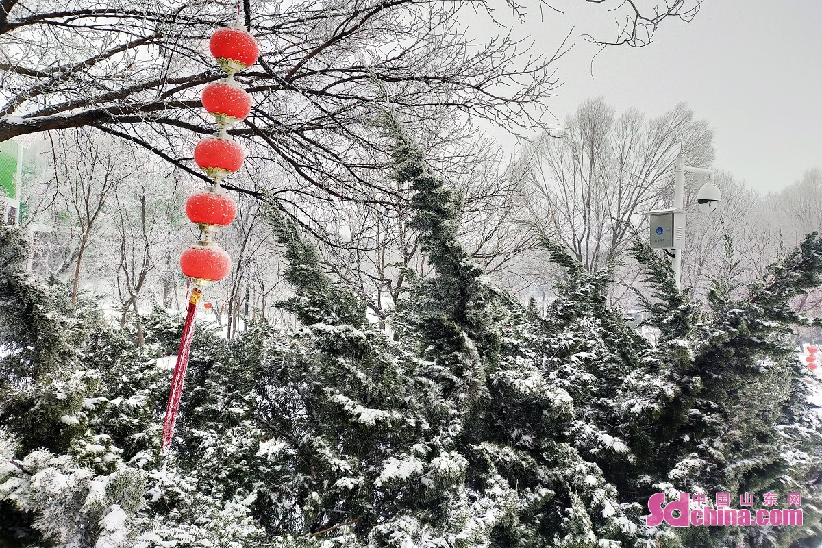 Shandong greeted its second snowfall in the Year of the Ox on March 1. Scenicareas are covered in snow and rime scenery appeared, creating a fairyland of snow and ice.