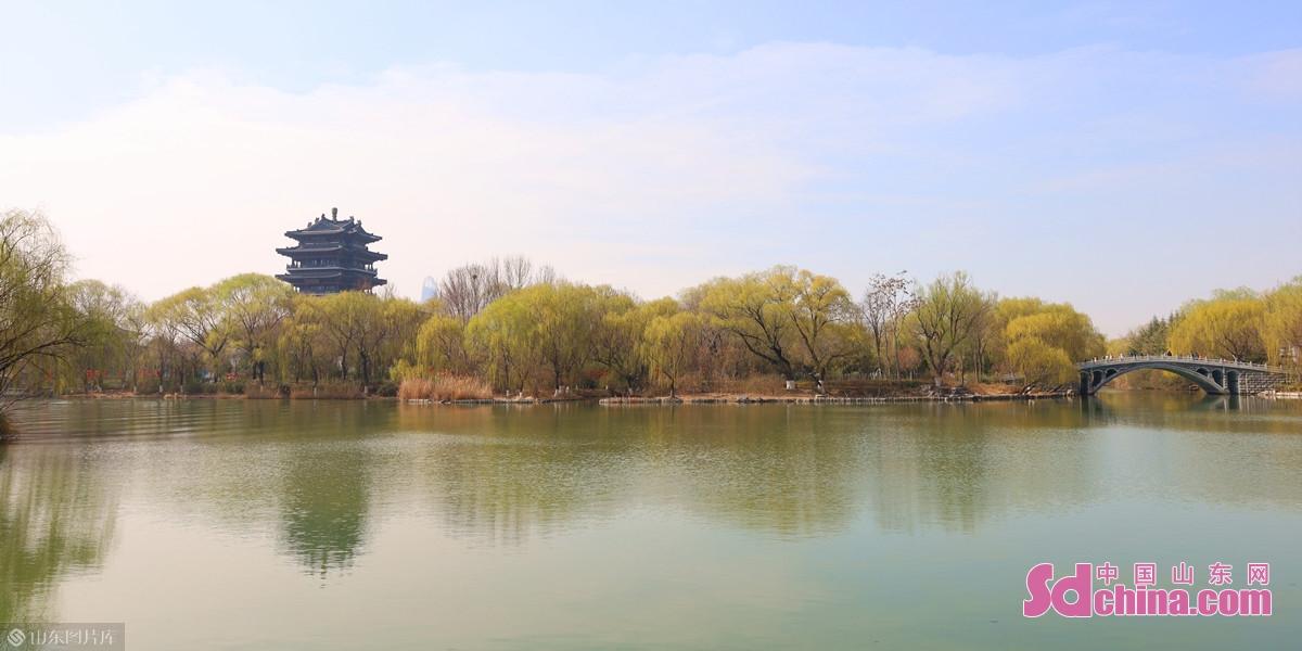 <br/>  大明湖沿岸,嫩绿的新柳映在澄澈春水中。<br/>