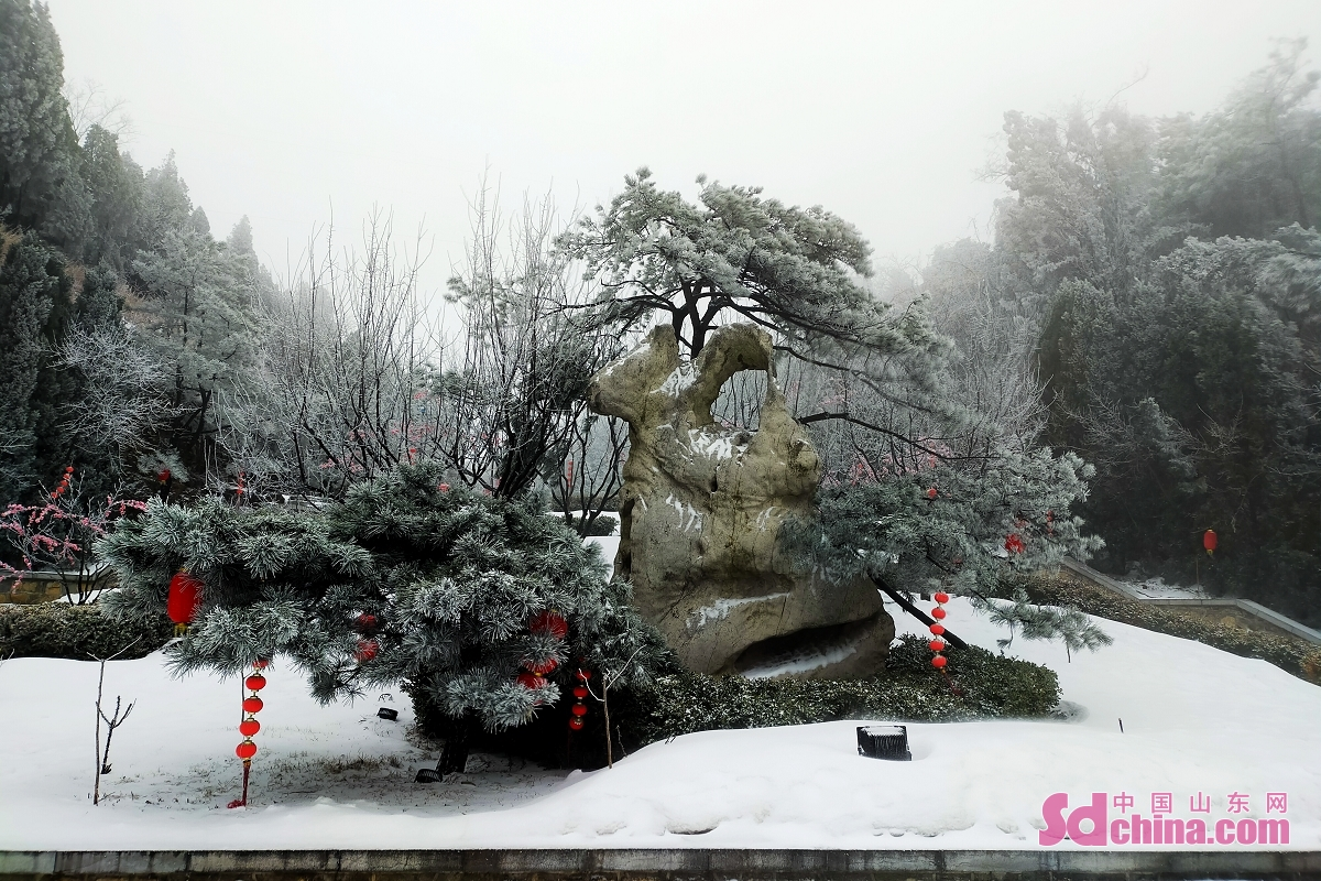 Shandong greeted its second snowfall in the Year of the Ox on March 1. Scenicareas are covered in snow and rime scenery appeared, creating a fairyland of snow and ice.<br/>